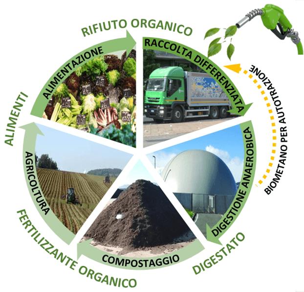 ciclo-alimenti-rifiuto-organico-digestato-fertilizzante-organico