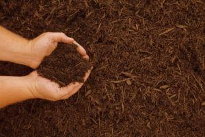 compost-con mani