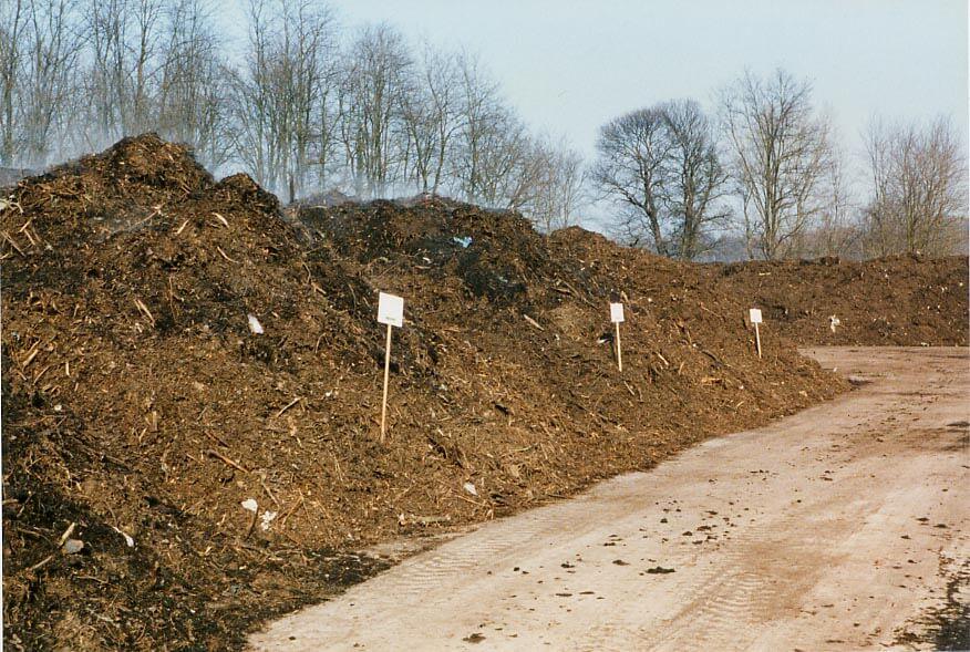 maturazione-compost-verde