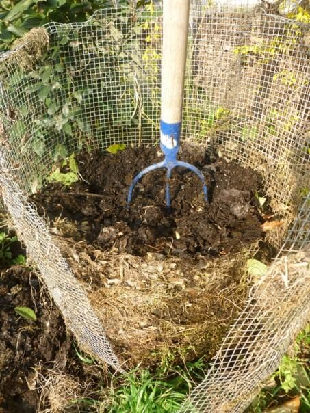 Compost pronto in rete_3