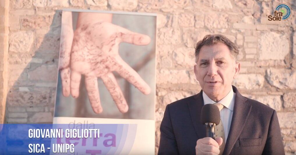 Gigliotti - Assisi