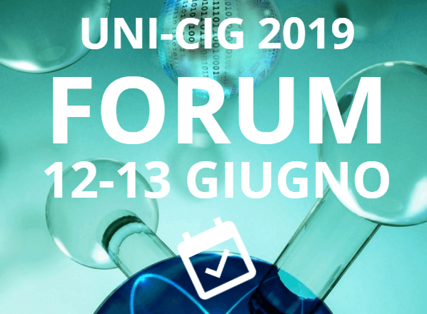 Forum UNI_CIG 2019 Miniatura