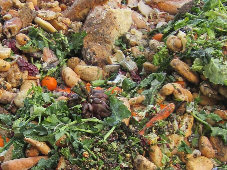 food waste - CIC