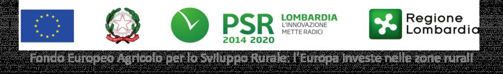 Logo Regione Lombardia ENTE FINANZIATORE