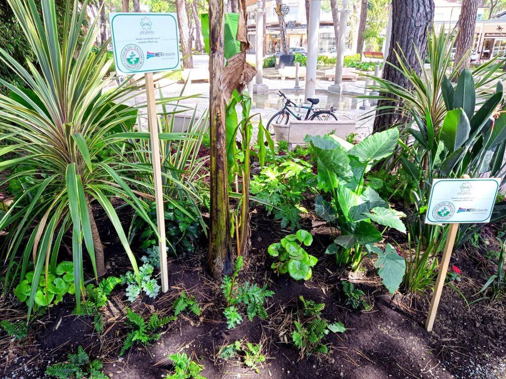 Cervia 2021 | Aiuola Si Compost 2030
